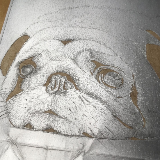 Pug: the etched plate; Drypoint etching on Tetrapak