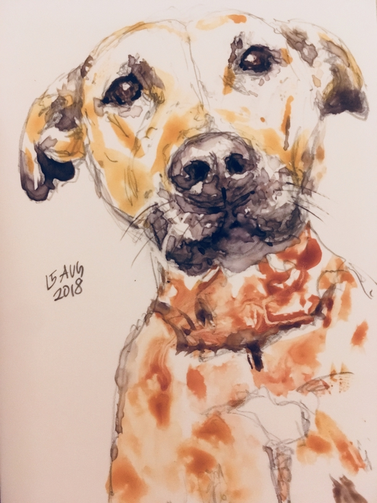 Yupo dog; Watercolour on Yupo paper