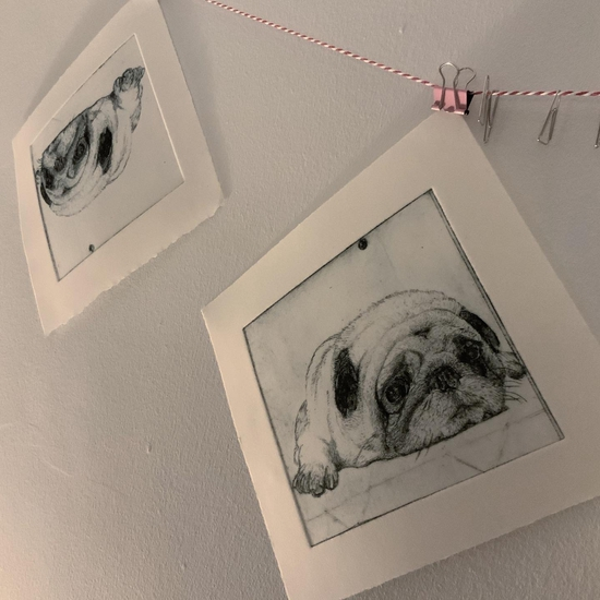 Pug (drying the prints); Drypoint etching on Tetrapak