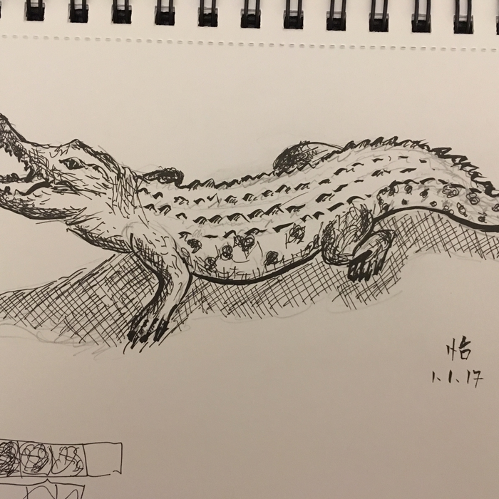 New year crocodile; Fineliner on paper