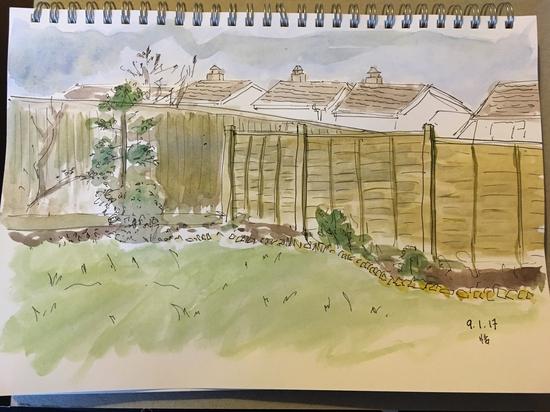 My garden; Watercolour on cheap paper