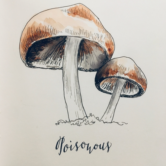 Inktober 2018: 1 Poisonous; Ink and watercolour