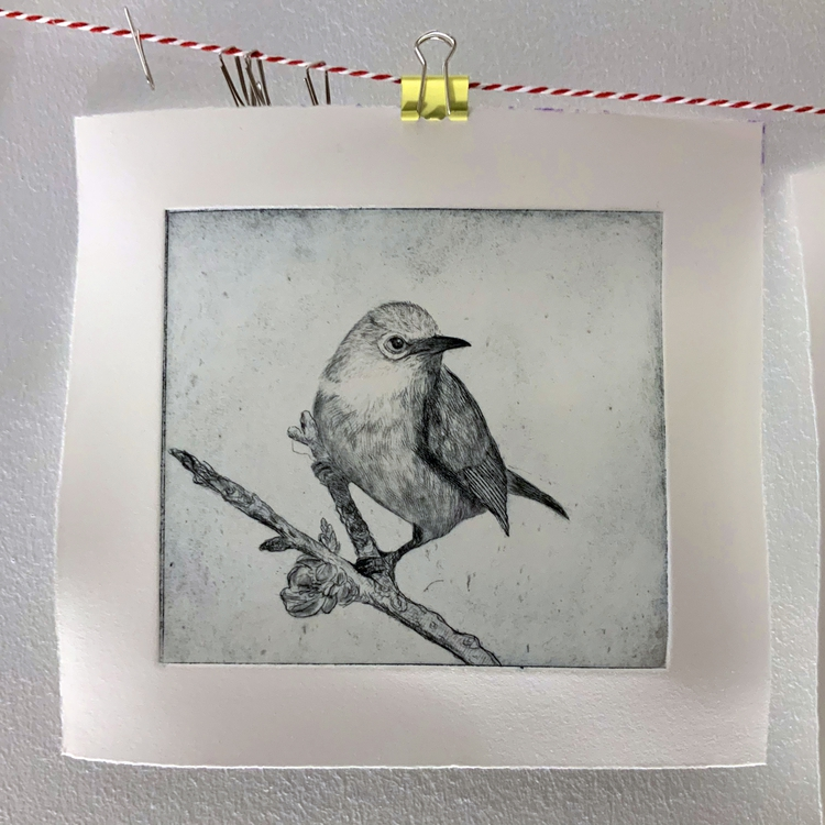 Puteh: 3/7; Drypoint etching on ham plastic packaging