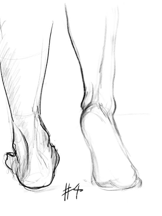 Life of drawing: week 8 Feet; iPad Procreate